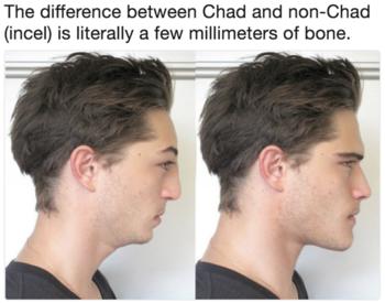 Chad Incel Wiki